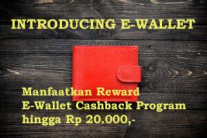 payment e-wallet elmanna