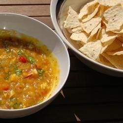 mango salsa mania recipes